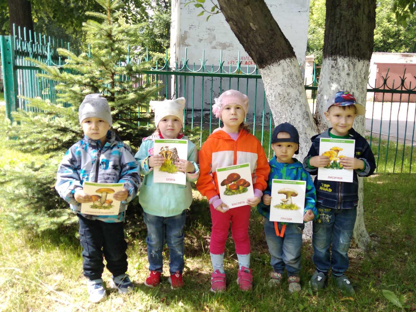 Детям о грибах